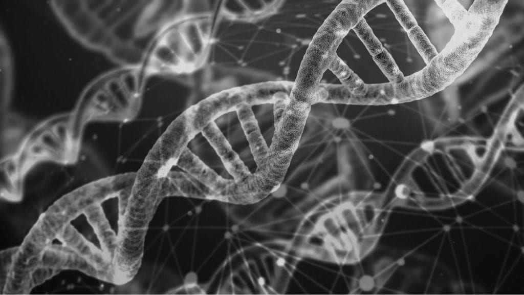 how methylation affects your health