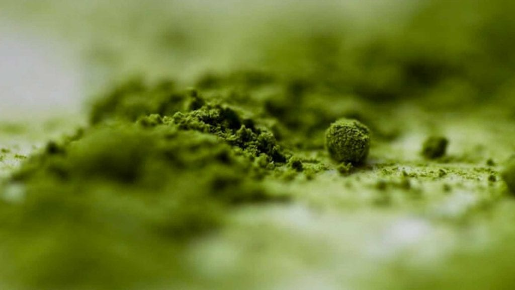 Methylfolate vs. Folic Acid Facts and Myths
