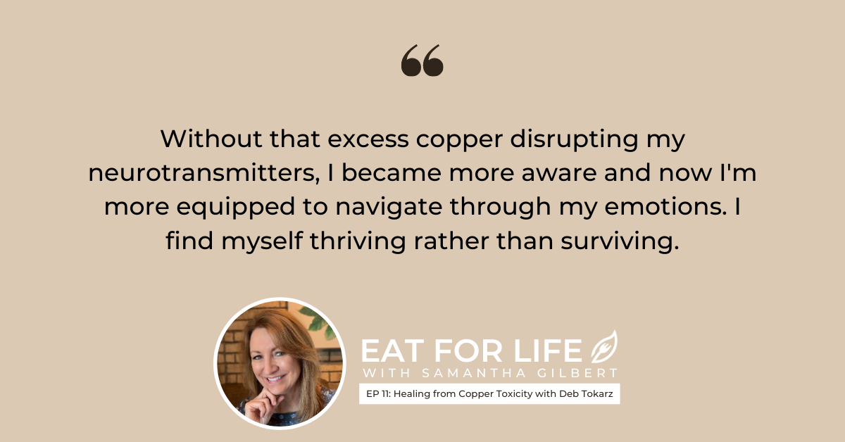 EP 11: Healing from Copper Toxicity with Deb Tokarz